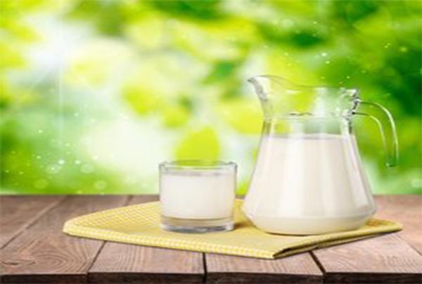 多功能净化柱-液相色谱法测定牛奶中黄曲霉毒素M1和M2含量
