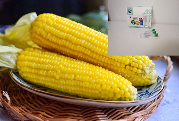 玉米赤霉烯酮免疫亲和柱